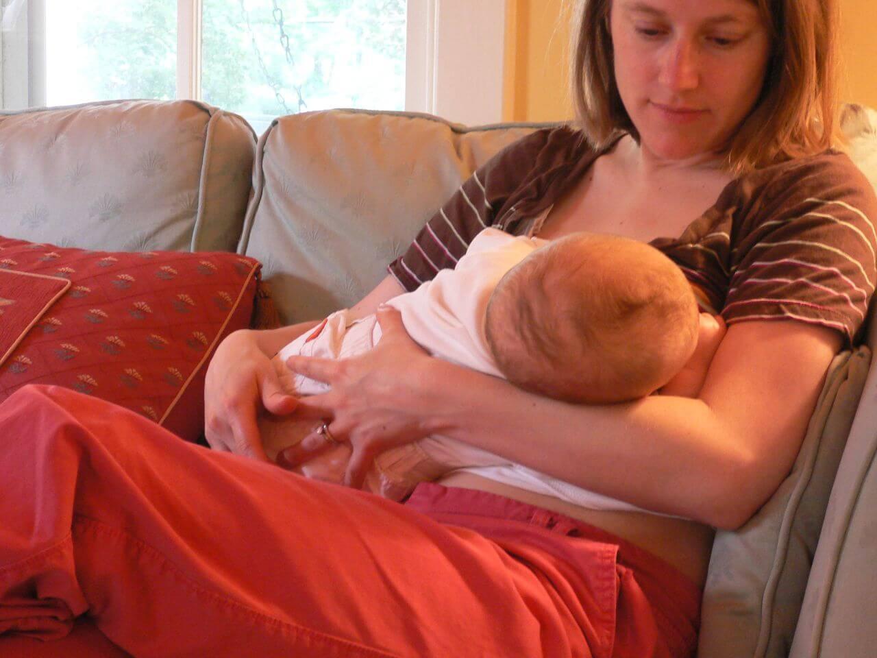 , Laptele matern, sursă de celule stem