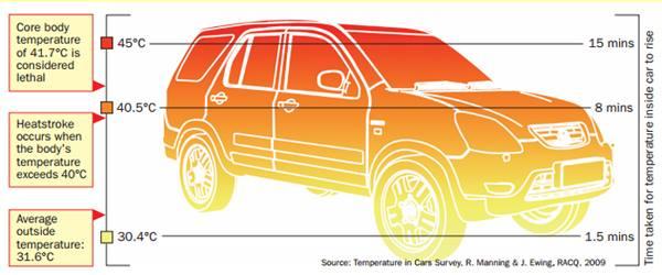 Ce se întâmplă când lași copilul în mașină, pe timp de vară?, Ce se întâmplă când lași copilul singur în mașină, pe timp de vară?
